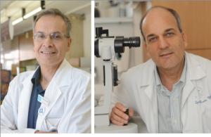 Prof. Benjamin Reubinoff and Prof. Eyal Banin, Hadassah