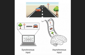 Processing an event with multiple objects. A synchronous input where all objects are presented simultaneously to a computer (left), versus an asynchronous input where objects are presented with temporal order. Credit: Prof. Ido Kanter