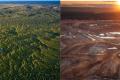 Impacts environnementaux de la pollution des hydrocarbures