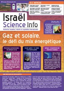 Gaz et solaire, le défi du mix énergétique