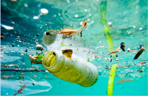 Bacterie qui mange du plastique Hidoxizon pentru condiloame