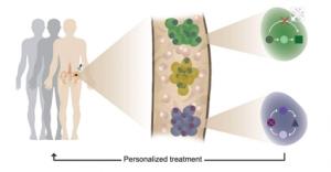 Méthode de diagnostic précoce (crédits : Institut Weizmann)
