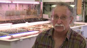 Baruch Rinkevich, biologiste marin