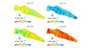 Les données ont permis d'établir une cartographie de l'état hydrique des vignes dans le temps et l'espace © Helman et al.