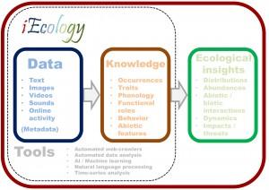 Représentation conceptuelle de l'iEcologie - montrant comment les types de données clés peuvent se transformer en connaissance du monde naturel à l'aide d'un ensemble d'outils de recherche qui, à leur tour, peuvent fournir de nouvelles perspectives écologiques
