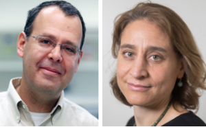 Nir Friedman (Cr: Yael Friedman) et Naomi Habib (Cr. Moshe Wolkowitz)