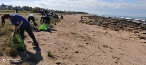 Des bénévoles sur les plages polluées (photo Eliel Lazmi)